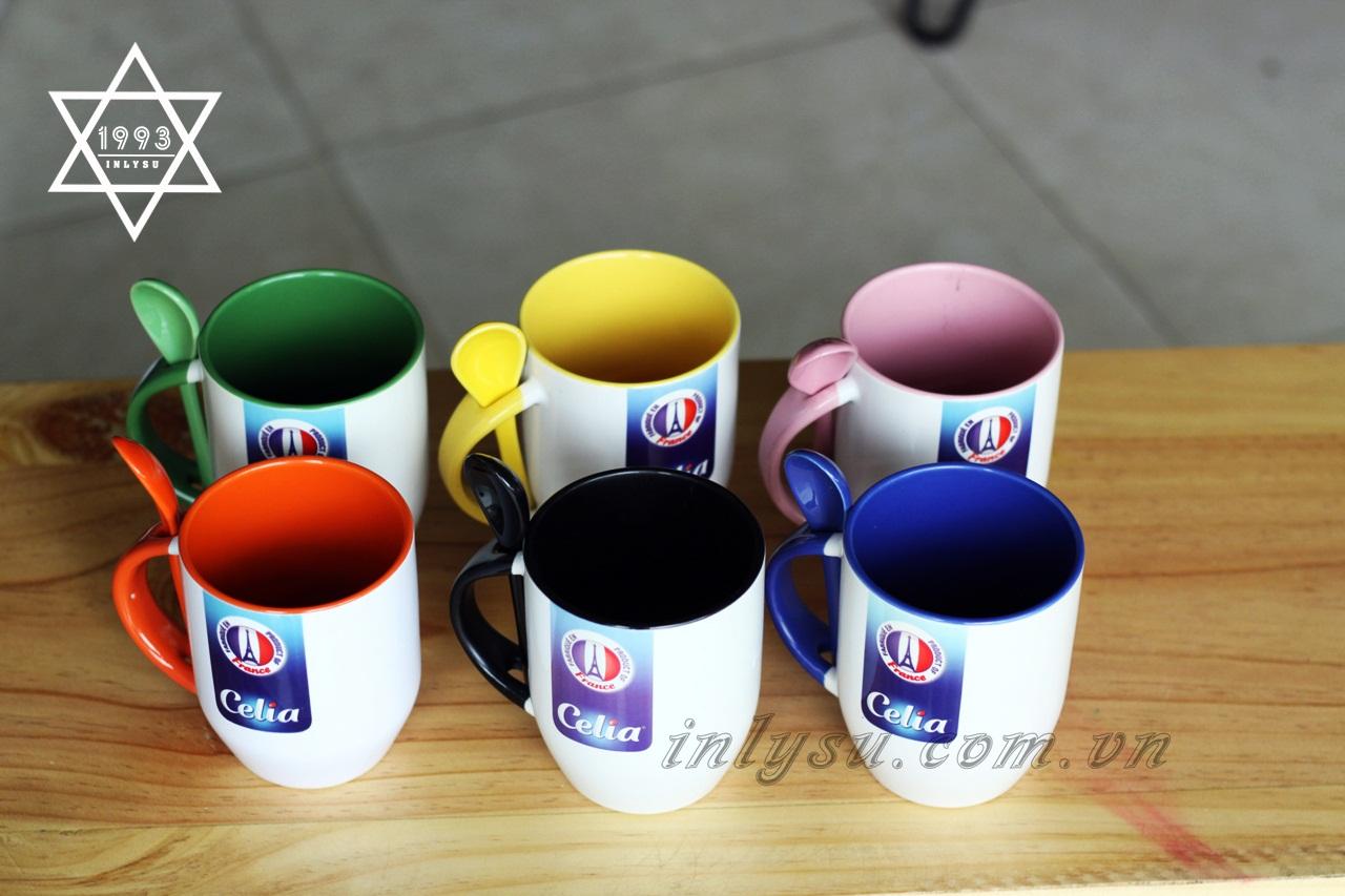 Ly có nhiều màu sắc cho bạn lựa chọn.