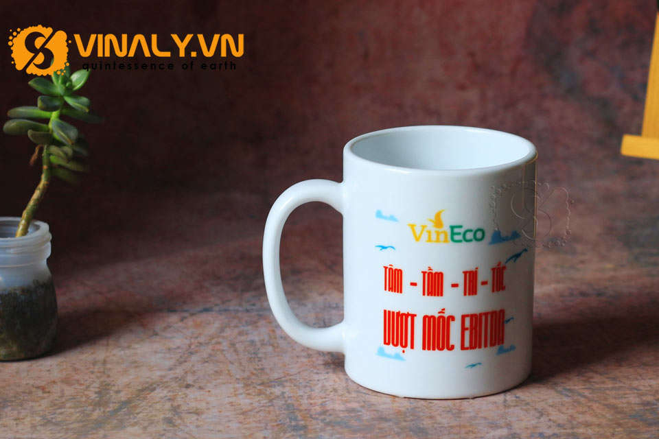 ly-su-vinaly-ly-su-trang-tru-ly-su-minh-long-in-logo-vineco